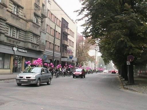 revolutie_roz_la_un_an_de_verde_pentru_biciclete_20091025_2047438178
