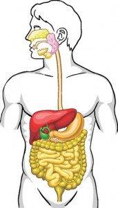 Cancerului pancreatic