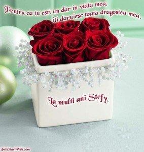 La_Multi_Ani_Stefy